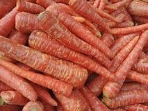 Τα καρότα φρέσκων λαχανικών για τρώνε στοκ εικόνα