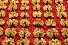 Τα καρύδια είναι άριστα για τη διατροφή και τα καλλυντικά υγείας Στοκ Εικόνες