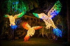 Τα καταπληκτικά φω'τα καλλιτεχνών ` Luci δ ` Artista ` στο Σαλέρνο κατά τη διάρκεια του χρόνου Χριστουγέννων, Campania, Ιταλία Στοκ Εικόνα