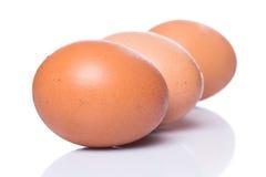 τα καφετιά αυγά στρέφουν αρχικά δύο Στοκ Εικόνες