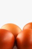 τα καφετιά αυγά στρέφουν αρχικά δύο Στοκ φωτογραφία με δικαίωμα ελεύθερης χρήσης