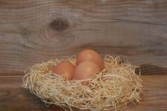τα καφετιά αυγά στρέφουν αρχικά δύο Στοκ Φωτογραφία