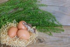 τα καφετιά αυγά στρέφουν αρχικά δύο Στοκ φωτογραφίες με δικαίωμα ελεύθερης χρήσης