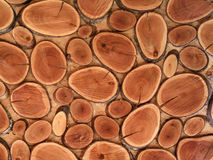 τα καφετιά πριονισμένα ξύλινα δαχτυλίδια, τοίχος είναι διακοσμημένα φυσικά υλικά Στοκ εικόνες με δικαίωμα ελεύθερης χρήσης
