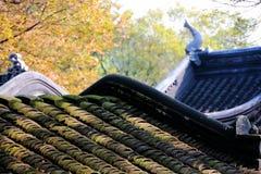 Τα κεραμίδια του φθινοπώρου πέφτουν στη μέση του λυκόφατος Στοκ Φωτογραφίες