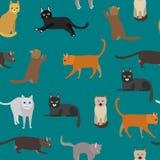 Τα κινούμενα σχέδια διαφορετικά δακτυλογραφούν το χαριτωμένο γατών υπόβαθρο σχεδίων χαρακτήρων άνευ ραφής διάνυσμα διανυσματική απεικόνιση