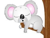 Τα κινούμενα σχέδια διανυσματικό Koala αντέχουν Στοκ Εικόνα