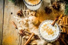 Τα κλασικά Χριστούγεννα πίνουν Eggnog στοκ φωτογραφίες με δικαίωμα ελεύθερης χρήσης