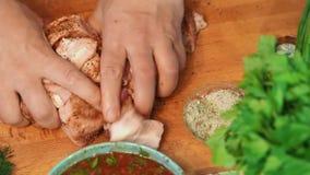 Τα κομμάτια αλάτων ατόμων του κρέατος φιλμ μικρού μήκους