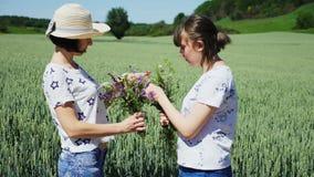 Τα κορίτσια εξετάζουν μια ανθοδέσμη των wildflowers στη φύση απόθεμα βίντεο