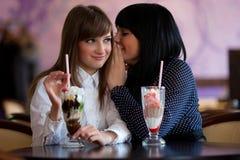 τα κορίτσια κουτσομπολεύουν Στοκ Εικόνες