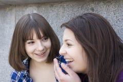 τα κορίτσια κουτσομπο&lambd Στοκ Εικόνα