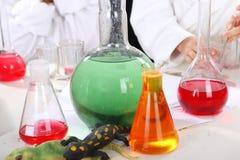 Τα κορίτσια πραγματοποιούν τα πειράματα στη χημεία στοκ εικόνες με δικαίωμα ελεύθερης χρήσης