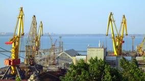 Τα κτήρια και οι γερανοί στο θαλάσσιο λιμένα στον ορίζοντα είναι ορατή πόλη φιλμ μικρού μήκους