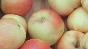 Κόκκινα μήλα στην αγορά απόθεμα βίντεο