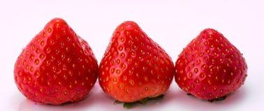 Τα κόκκινα σμέουρα στο λευκό η φράουλα στο άσπρο υπόβαθρο Στοκ φωτογραφία με δικαίωμα ελεύθερης χρήσης
