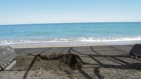 Τα κύματα με τον αφρό που περιτυλίγει ήπια στην παραλία και τα χαλίκια, και αναχωρούν στη θερινή ηλιόλουστη ημέρα απόθεμα βίντεο