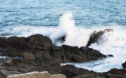 Τα κύματα του Ειρηνικού Ωκεανού, το τοπίο παραλιών Στοκ φωτογραφίες με δικαίωμα ελεύθερης χρήσης