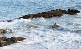 Τα κύματα του Ειρηνικού Ωκεανού, το τοπίο παραλιών Στοκ Φωτογραφία