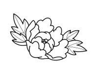 Τα λουλούδια δερματοστιξιών καθορισμένα την εργασία σημείων στοκ εικόνες