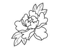 Τα λουλούδια δερματοστιξιών καθορισμένα την εργασία σημείων στοκ εικόνα