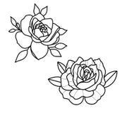 Τα λουλούδια δερματοστιξιών καθορισμένα την εργασία σημείων διανυσματική απεικόνιση