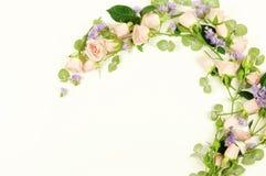 τα λουλούδια εμβλημάτων ανασκόπησης διαμορφώνουν λίγη ρόδινη σπείρα Το πλαίσιο στεφανιών φιαγμένο από ρόδινους λουλούδια και ευκά Στοκ φωτογραφίες με δικαίωμα ελεύθερης χρήσης