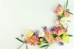 τα λουλούδια εμβλημάτων ανασκόπησης διαμορφώνουν λίγη ρόδινη σπείρα Το στεφάνι πλαισίων του πράσινου ευκαλύπτου διακλαδίζεται και Στοκ Εικόνα