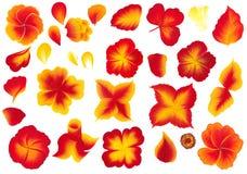 Τα λουλούδια θέτουν τη μια ζωγραφική ύφους κτυπήματος στο υπόβαθρο ελεύθερη απεικόνιση δικαιώματος