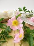 τα λουλούδια ουσίας λουτρών αυξήθηκαν άγρια περιοχές Στοκ Εικόνα
