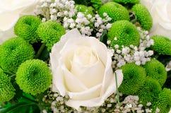 τα λουλούδια πράσινα αυ& Στοκ φωτογραφίες με δικαίωμα ελεύθερης χρήσης