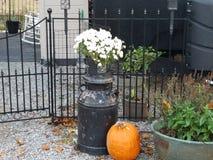 Τα λουλούδια σε ένα χρωματισμένο γάλα μπορούν από την πύλη Στοκ Φωτογραφίες