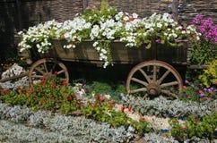 τα λουλούδια σπορείων εξέδωσαν το παλαιό αγροτικό ύφος Στοκ Εικόνα