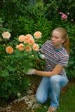 τα λουλούδια φαίνονται &ga στοκ εικόνα με δικαίωμα ελεύθερης χρήσης