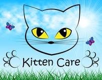 Τα μέσα προσοχής γατακιών φροντίζουν και γάτα Στοκ Φωτογραφία