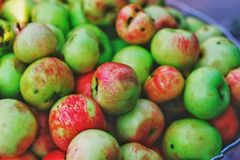 τα μήλα κήπων πράσινα με την κόκκινη πλευρά συλλέγονται σε ένα κύπελλο στοκ φωτογραφία με δικαίωμα ελεύθερης χρήσης