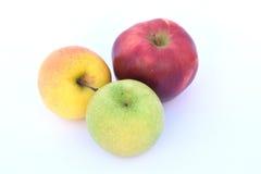 Τα μήλα Στοκ φωτογραφία με δικαίωμα ελεύθερης χρήσης