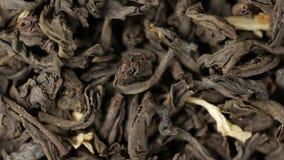 Τα μαύρα φύλλα τσαγιού κλείνουν επάνω Περιστροφή βρόχων απόθεμα βίντεο