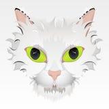 τα μεγάλα μάτια γατών αντιμ&epsi Στοκ Φωτογραφίες