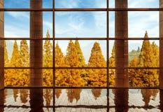 Τα μεγάλα Windows της σύγχρονης αρχιτεκτονικής Στοκ Εικόνα