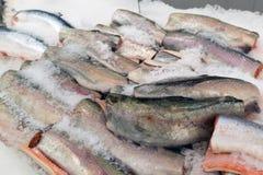 Τα μεγάλα κομμάτια των κόκκινων ψαριών στον πάγο στην αγορά ψαριών Στοκ Εικόνες