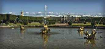 τα μεγάλα μουσεία ιστορίας πηγών καλλιέργειας ένα σταθμεύουν peterhof τα ρωσικά Στοκ Εικόνες