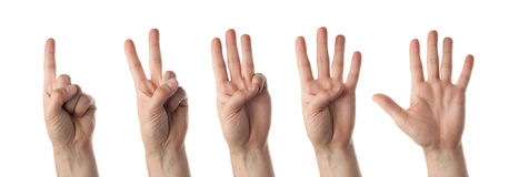 τα μετρώντας χέρια απομόνωσαν το αρσενικό λευκό Στοκ Φωτογραφία