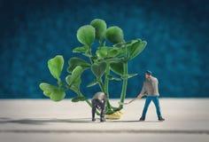 Τα μικροσκοπικά άτομα φυτεύουν ένα δέντρο Στοκ Φωτογραφίες