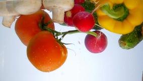 Τα μικτά λαχανικά ανακατώνουν στο νερό Πιπέρι κουδουνιών, ντομάτες, αγγούρι και ραδίκι απόθεμα βίντεο