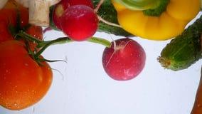 Τα μικτά λαχανικά ανακατώνουν στο νερό Πιπέρι κουδουνιών, ντομάτες, αγγούρι και ραδίκι φιλμ μικρού μήκους