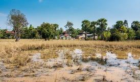 Τα μπανγκαλόου σε Angkor σύνθετο, Siem συγκεντρώνουν, Καμπότζη Στοκ φωτογραφίες με δικαίωμα ελεύθερης χρήσης