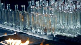 Τα μπουκάλια γυαλιού παίρνουν μμένα και αφαιρούμενα από τη ζώνη μεταφορέων απόθεμα βίντεο