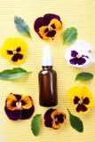 Τα μπουκάλια με το πετρέλαιο λουλουδιών, επίπεδο βάζουν, βιο, οργανικός, cosmeti φύσης στοκ εικόνες