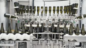Τα μπουκάλια του πράσινου χρώματος κινούνται σύμφωνα με την αυτοματοποιημένη γραμμή κατασκευής στο εργοστάσιο της σαμπάνιας ή του φιλμ μικρού μήκους